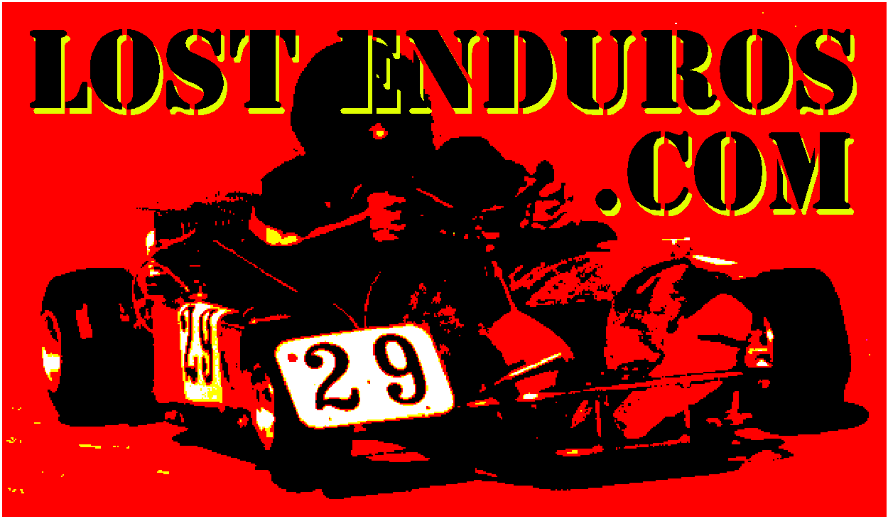 Lost Enduro Sticker